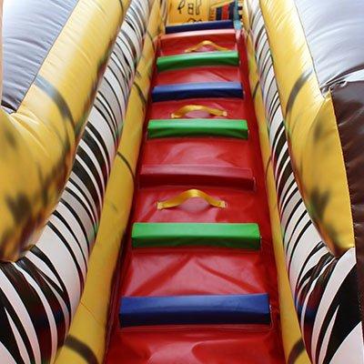 adult water slide
