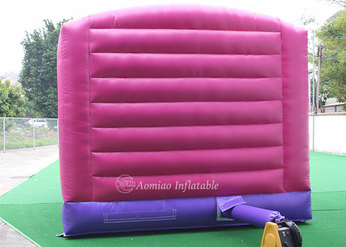 giant indoor inflatable bouncer